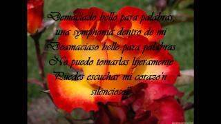 Christina Aguilera - Too Beautiful For Words (TRADUCIDA AL ESPANOL)