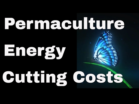Permaculture Energy Assessment Cutting Costs 🌞