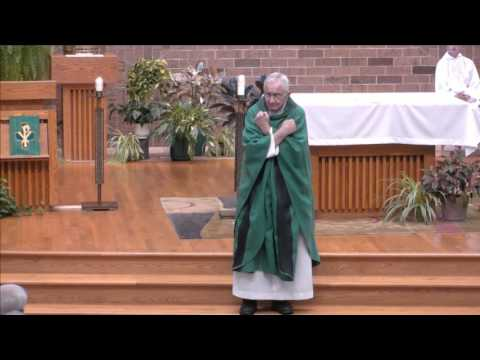 Homily for the Fourteenth Sunday of Ordinary Time: Sunday, July 9, 2017 -Msgr. James Feely