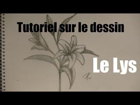 Tutoriel sur le dessin la fleur de lys youtube - Dessin fleur de lys ...