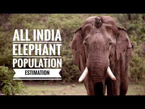 Project Elephant-All India Elephant Population Estimation 2017
