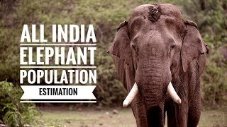 Project Elephant-All India Elephant Population Estimation 2017 | Goutham G Varrier