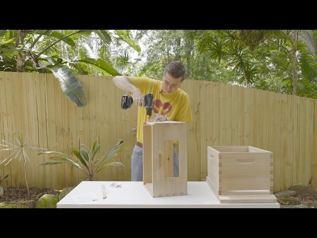 Best Bee Hive for Beginner Beekeepers [2019 EDITION]