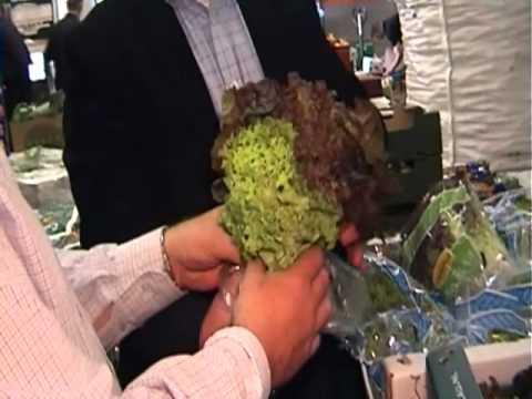 Dublin Fruit & Vegetable Market