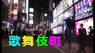 新宿 歌舞伎町✯昼と夜ガイド✯Tokyo Kabukichō night view ✯Tokyo night Driving ✯Tokyo Japan Travel