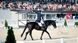Пресс конференция Сборная России по конному спорту на Олимпиаде 2021 в Токио