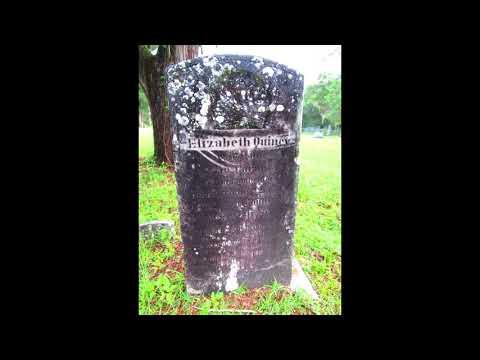 Levyville Cemetery Florida
