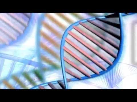 Principles of Biotechnology and Genetic Engineering Part-1/2 (DNA and RNA)
