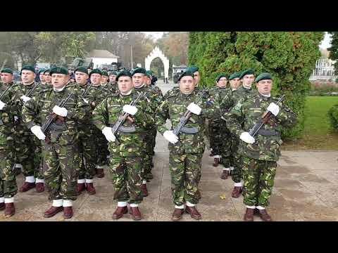 Pregatiri pentru Ziua Armatei la Carei