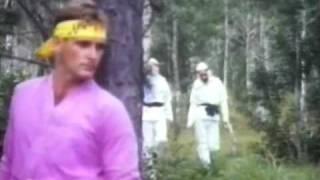 Godfrey Ho's Full Metal Ninja (2)