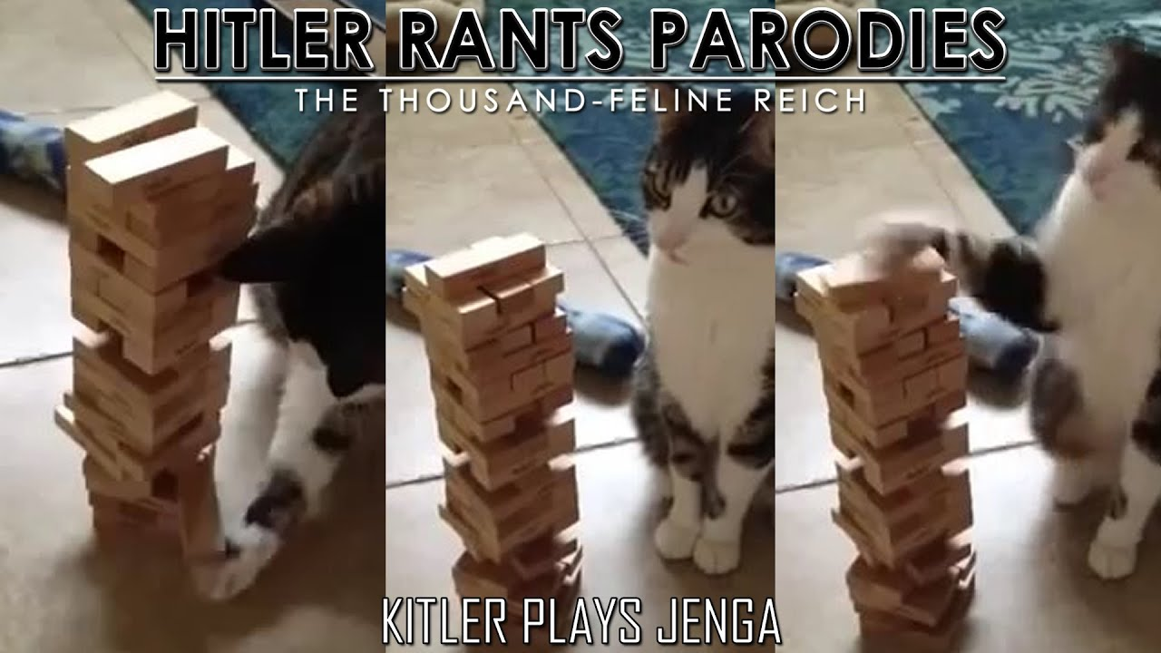 Kitler plays Jenga