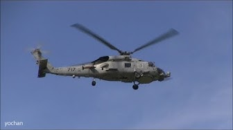 """Sikorsky SH-60 Seahawk helicopter. the U.S. Navy HSL-51 """"WARLORDS"""" TA-717"""