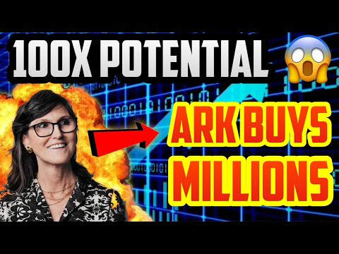 Cathie Wood Buys *NEW* Stock Like NNDM - Ark Invest 100X Penny Stock