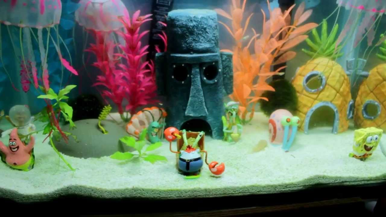 Best complete spongebob theme aquarium youtube for Aquarium decoration set