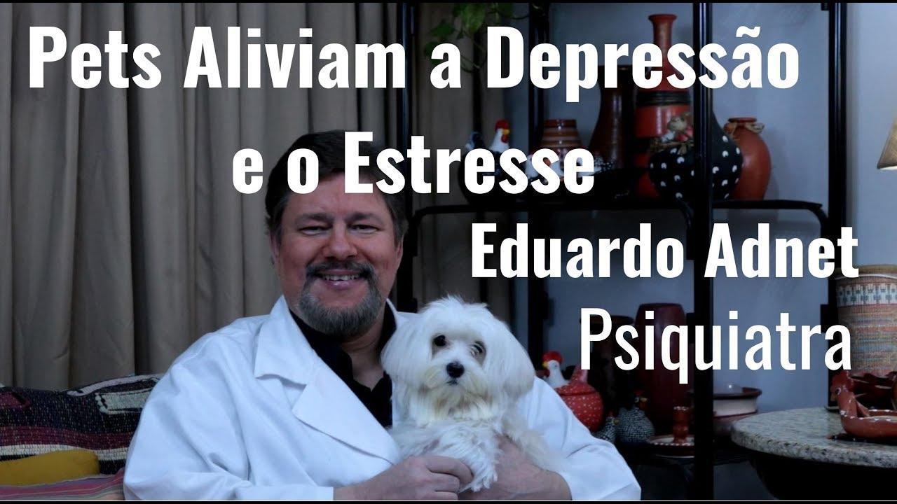 Pets - Animais de Estimação aliviam a Depressão e o Estresse - Dr Eduardo Adnet Psiquiatra RJ
