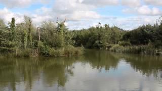 FURZEBRAY LAKES, SOUTH MOLTON, DEVON