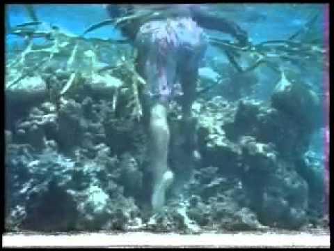Underwater Video 01