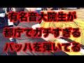 Samba サンバ 🇧🇷 東京学芸大学ラテンアメリカ研究会2014 🇯🇵 - YouTube