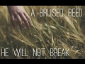 A Bruised Reed He Shall Not Break  ( Isaiah 42:3 )