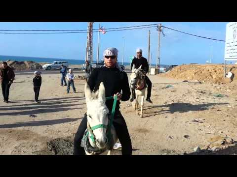 Gangnam #Gaza Style
