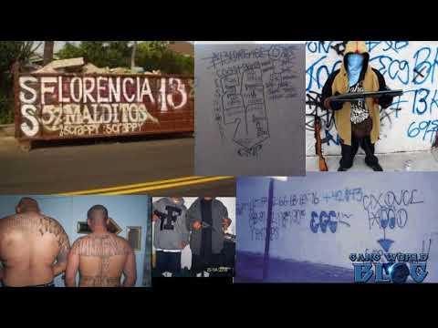East Coast Crips Vs Florencia 13 Gang rivalry grows into race war