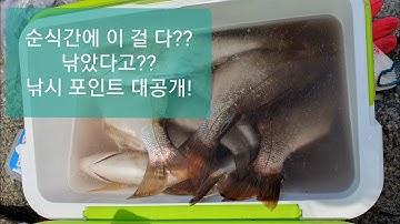 폭풍입질 1탄!! 강릉 낚시포인트 공개