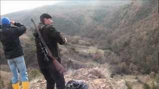 Voyage (chasse) en Turquie 2011