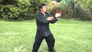 Tai Chi Chen 2nd Form (Sifu Liu Rui Qi) Series 1 [Toronto, Canada]