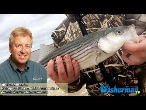 March 8, 2018 New Jersey/Delaware Bay Fishing Report with Jim Hutchinson, Jr.
