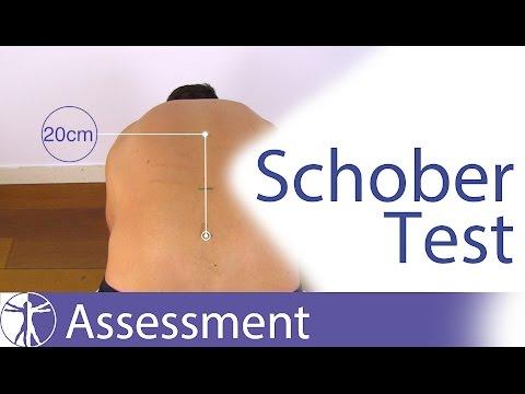 Schober Test for Lumbar Spine Flexion