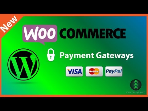How To Add PayPal & Credit Card Payment Gateway In WooCommerce - Payment Processors