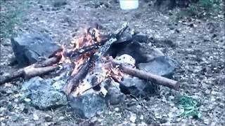 Лесной костер, огонь, природа, лес, часть 2 (видео о природе)