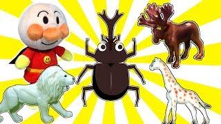 未来をひらく昆虫テクノロジー (9)吸血昆虫「蚊・オオサシガメ」の不思議な力 虫・昆虫(7)蝶