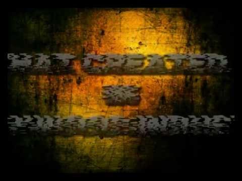 A.C.P RANVEER (Odia Movie).flv