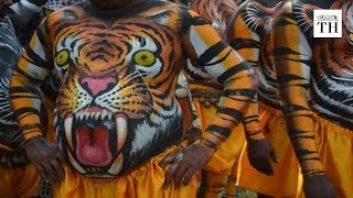 Pulikkali Kerala's 'play of the tigers'