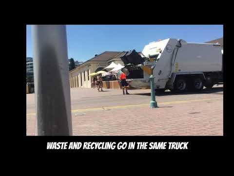 Bondi Beach Waste - Waverley Council