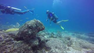 Scuba Diving in Punta Cana - August 2017