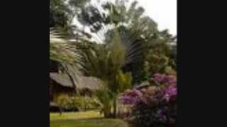 Elone Antenne 2  minvoul (Gabon)