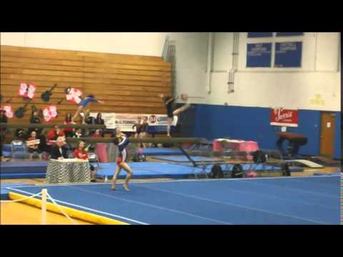 level 9 gymnastics meet 2015