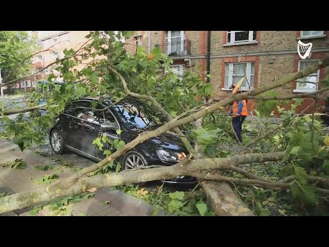 WATCH: Car trapped under tree as strong winds wreak havoc in Dublin City Centre