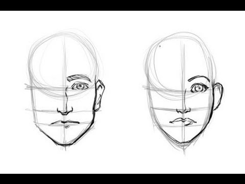 Drawing the difference mens and womans faces