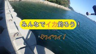 【エギング】皆でワイワイイカ釣ろう!