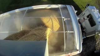 case ih 305 magnum kinze 1050 grain cart john deere 9770 soybean harvest 2011