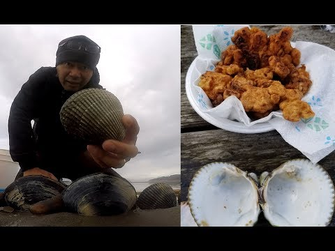 Oregon clamming - how to catch and cook clams