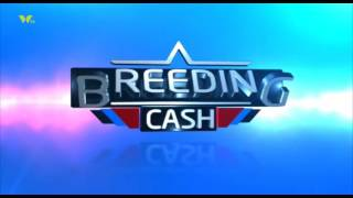 BREEDING CASH; PIG FARMING IN KIAMBU TING'ANG'A