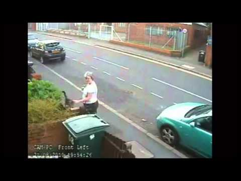 Woman throws cat into wheelie bin