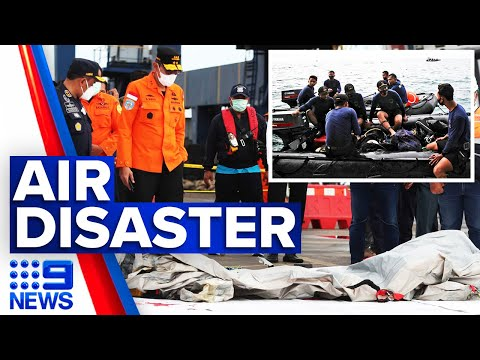 Search underway for missing Indonesian passenger jet | 9 News Australia thumbnail