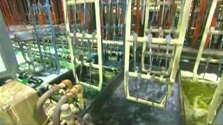Как сделать храповой механизм(Как сделать храповой механизм., 2014-04-28T13:45:00.000Z)