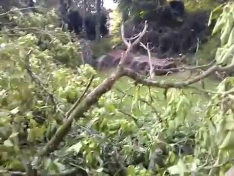 Orage jardin anglais vesoul video filmee youtube for Jardin anglais vesoul