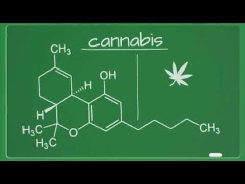 THC treat Addiction